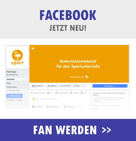 Facebook - vlamingo.de