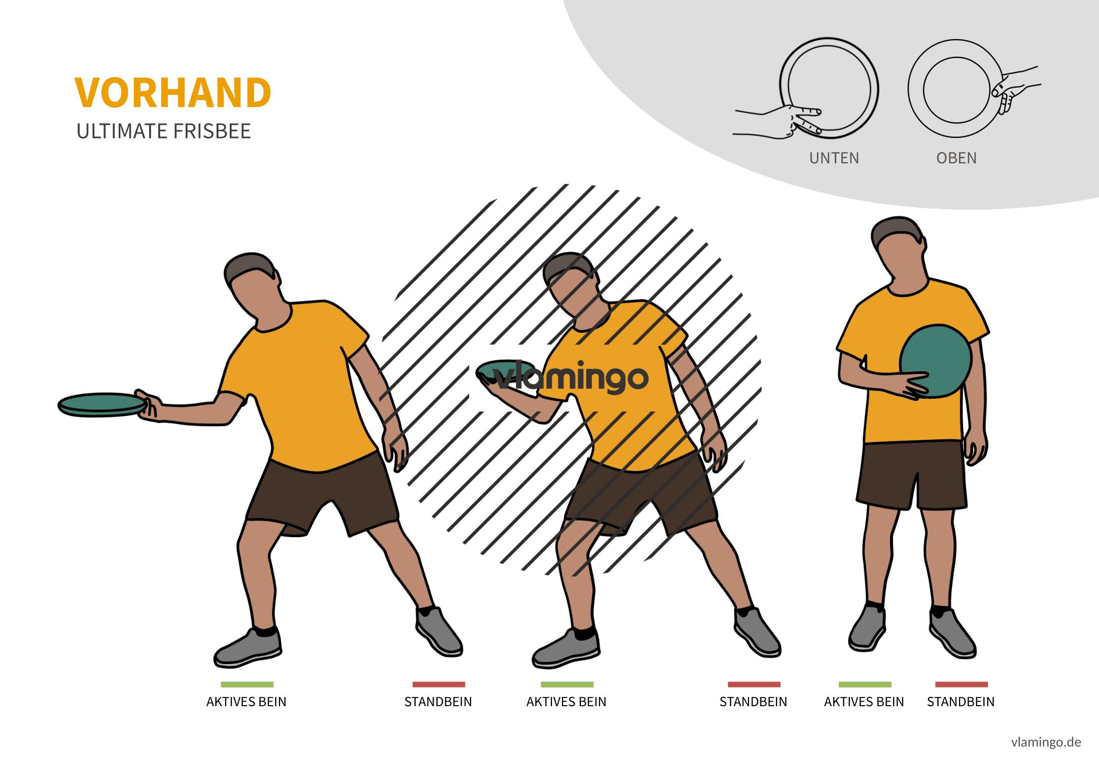 Frisbee - Wurftechnik - Vorhand