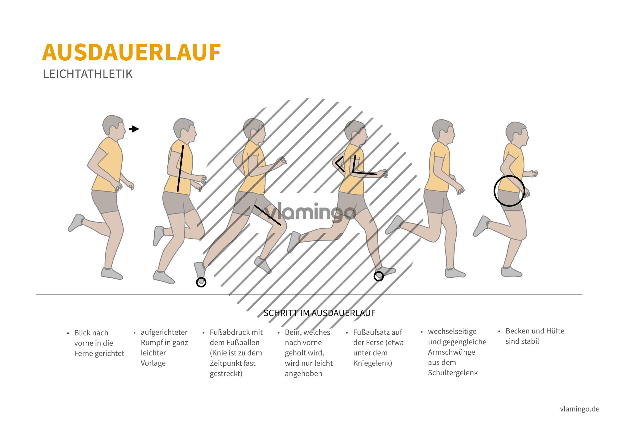 Ausdauerlauf (Bewegungsanalyse) - Leichtathletik