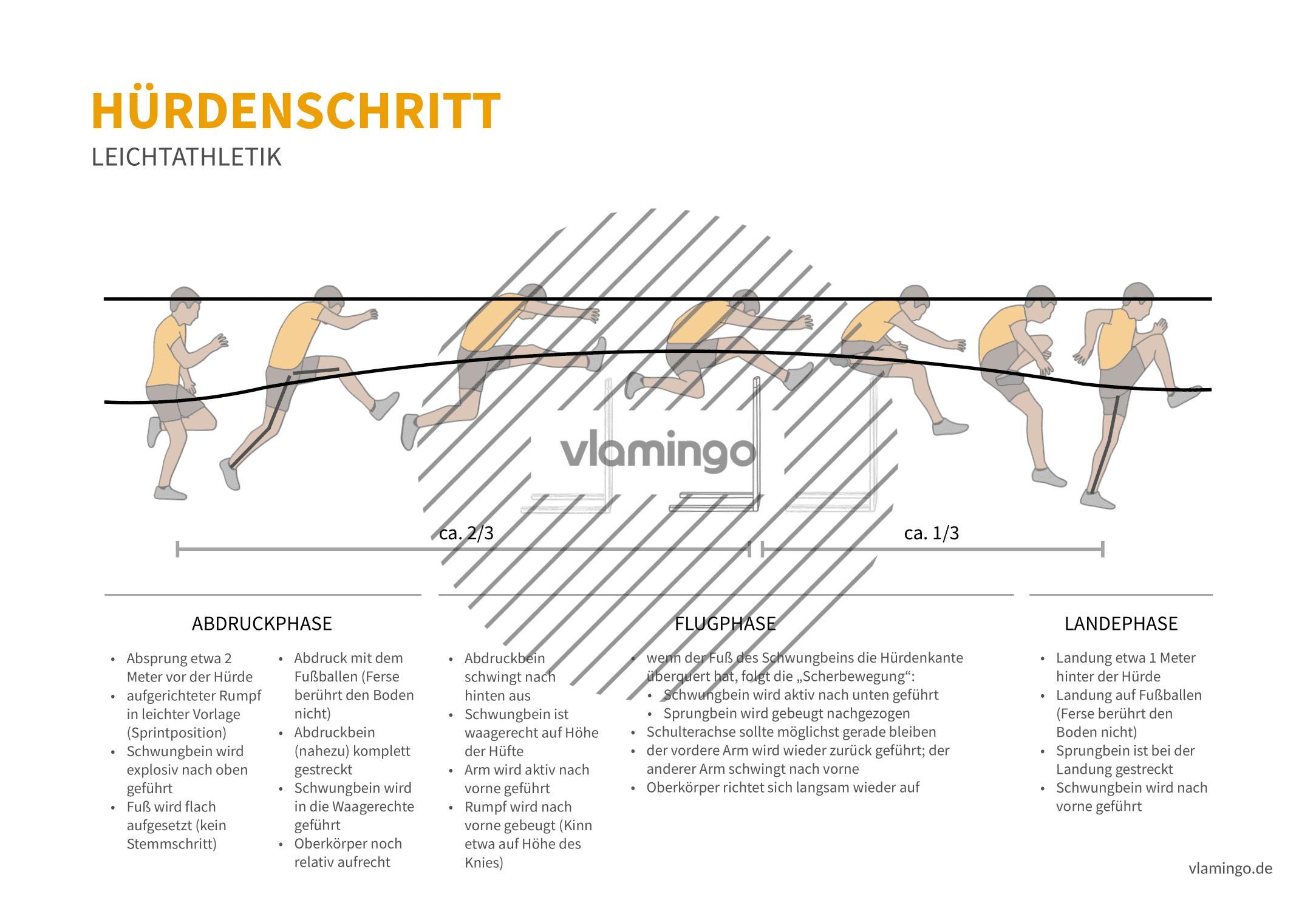 Hürdenschritt (Bewegungsanalyse) - Leichtathletik