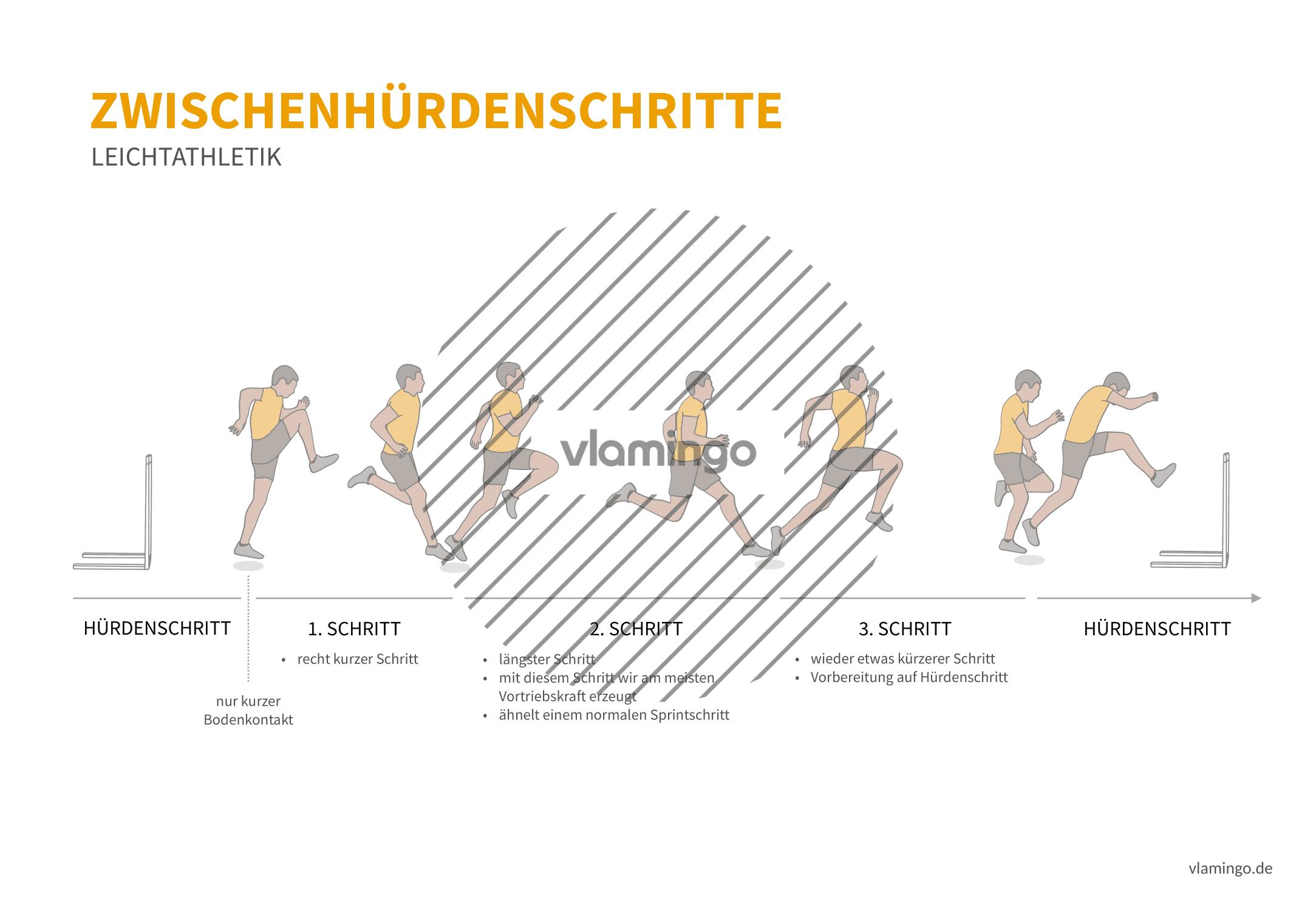 Hürdenzwischenschritt (Bewegungsanalyse) - Leichtathletik