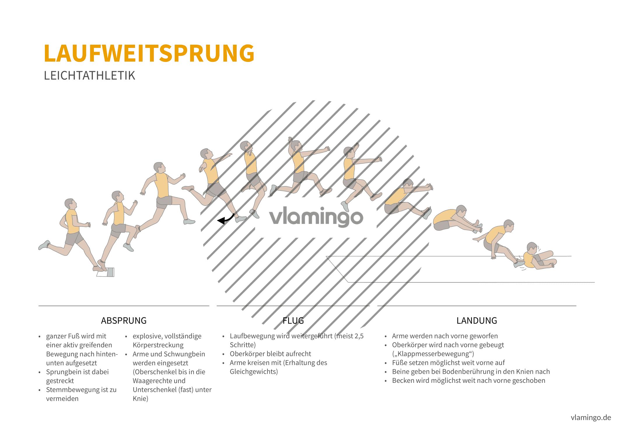 Laufsprung (Bewegungsanalyse) - Leichtathletik