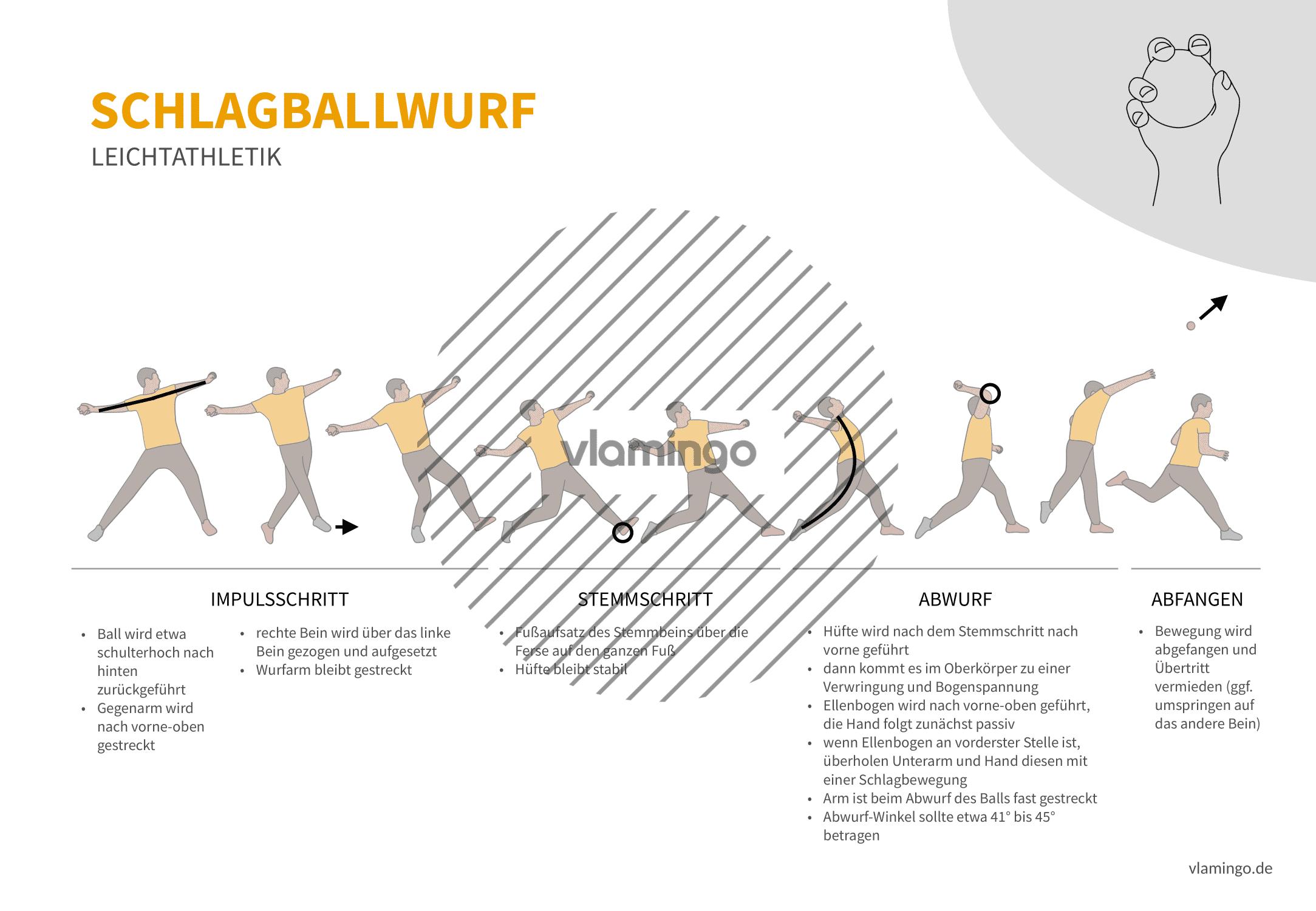 Schlagballwurf (Bewegungsanalyse) - Leichtathletik