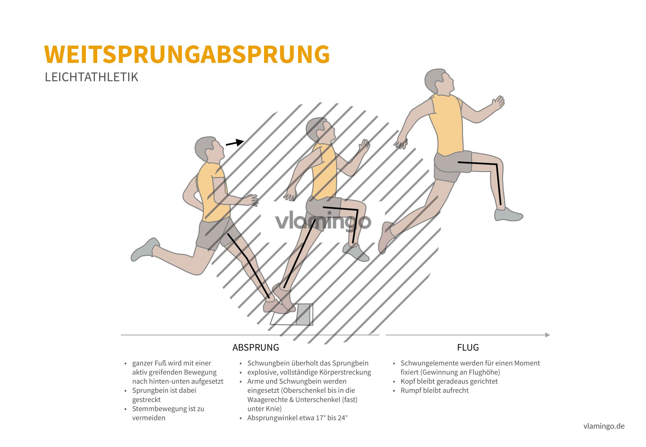 Weitsprung Absprung (Bewegungsanalyse) - Leichtathletik