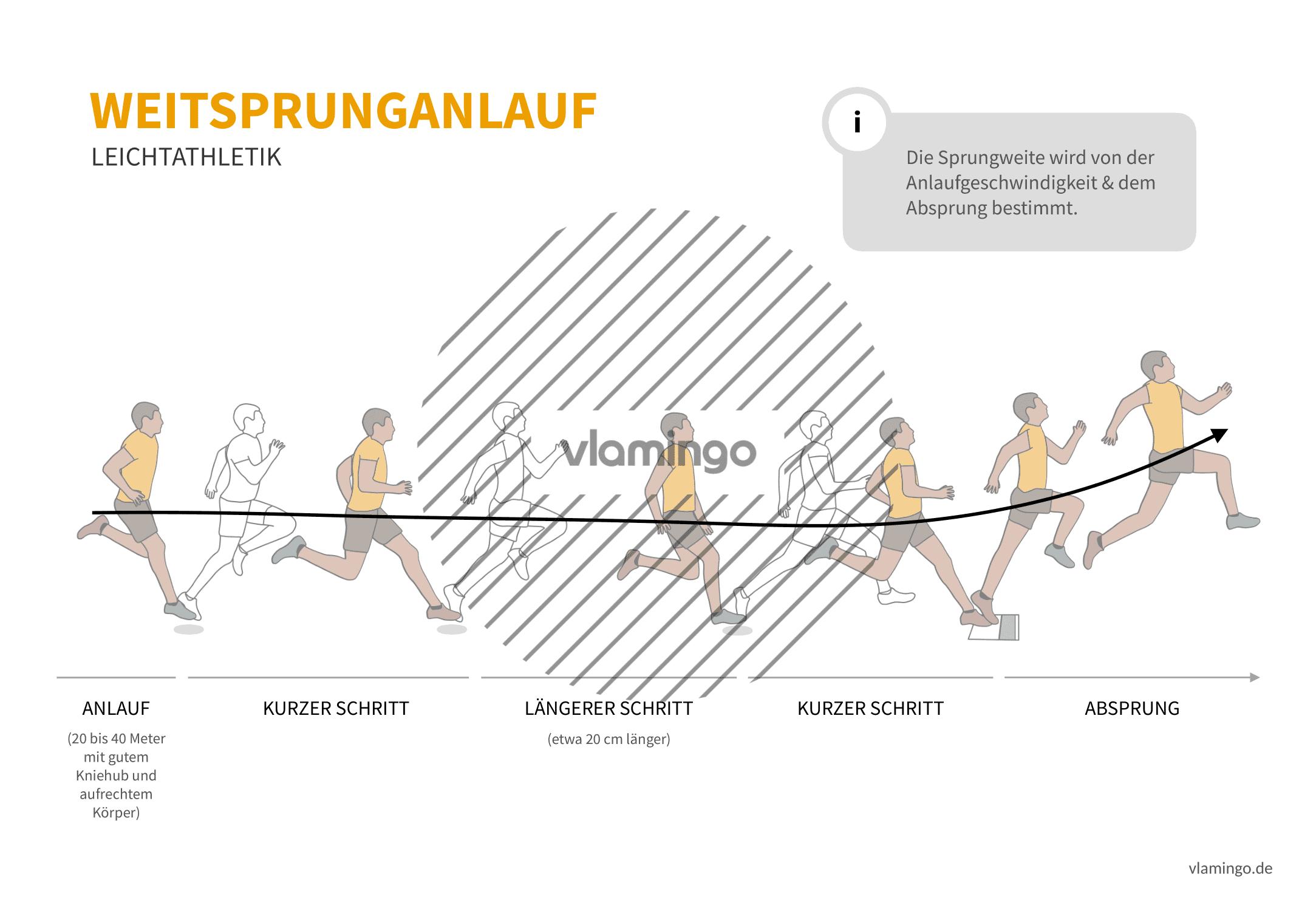Weitsprung Anlauf (Bewegungsanalyse) - Leichtathletik