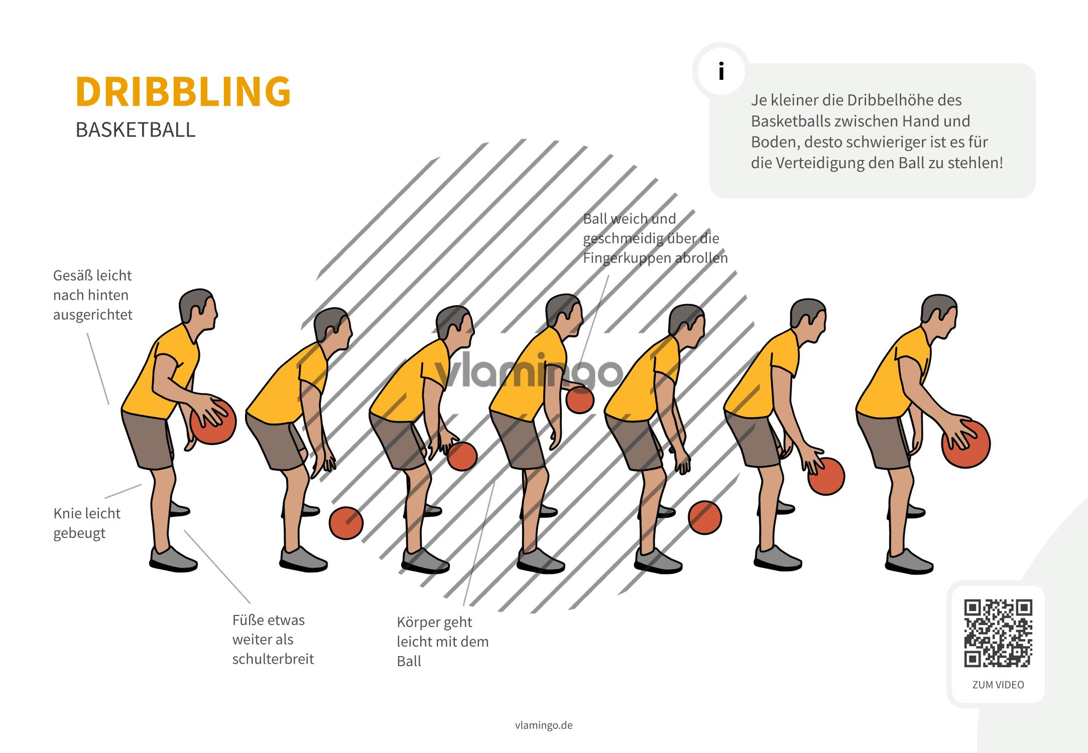 Basketball - Dribbling (von der Seite)