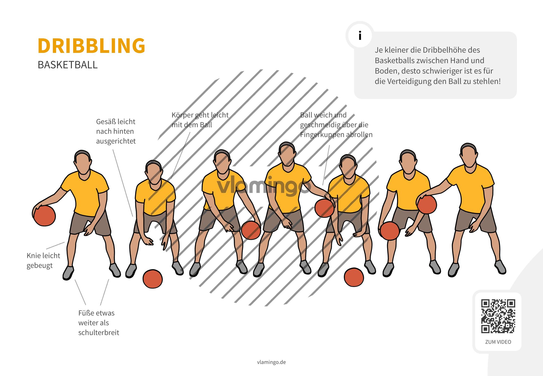Basketball - Dribbling (von vorne)