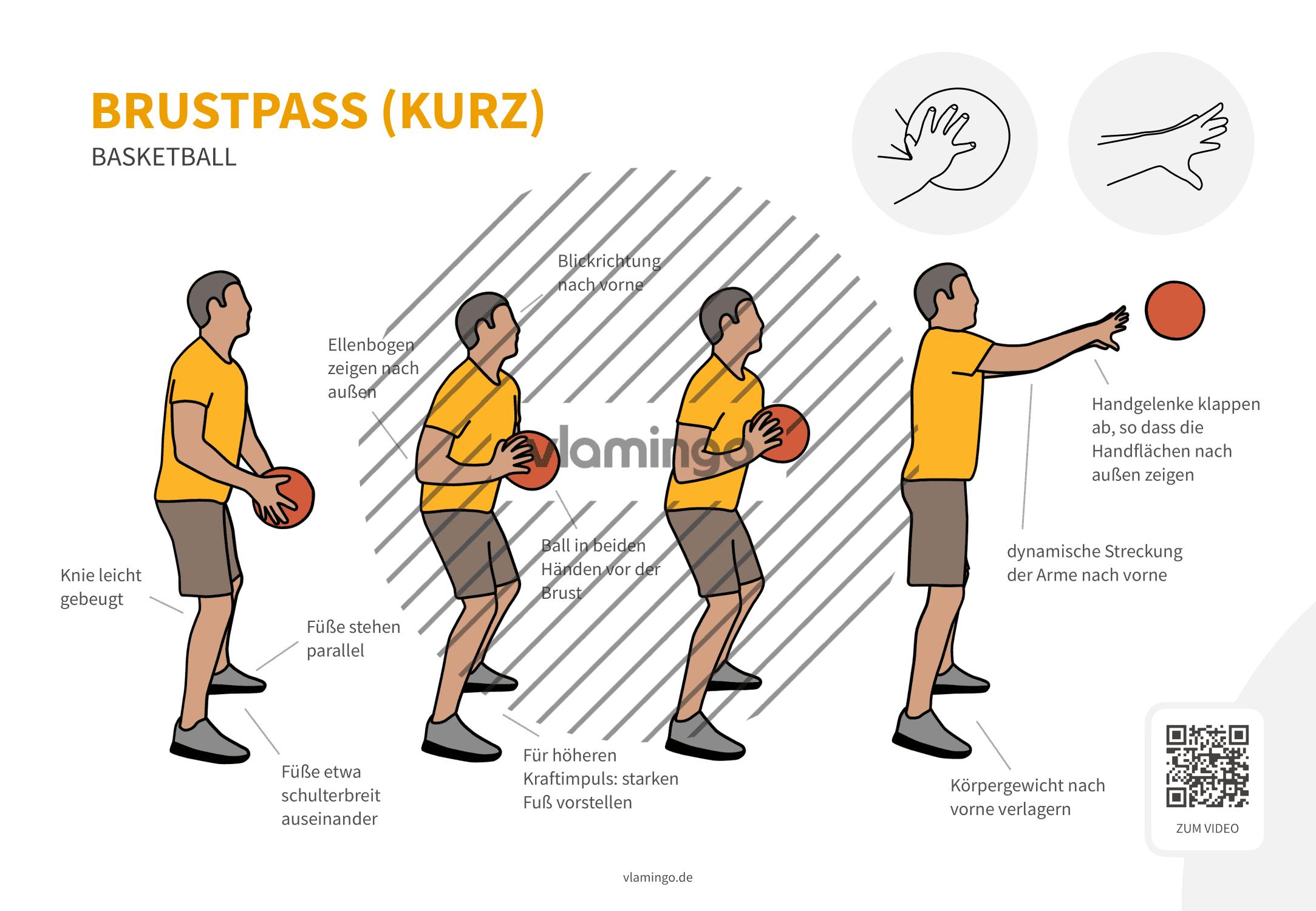 Basketball - Druckpass - Brustpass (von der Seite)