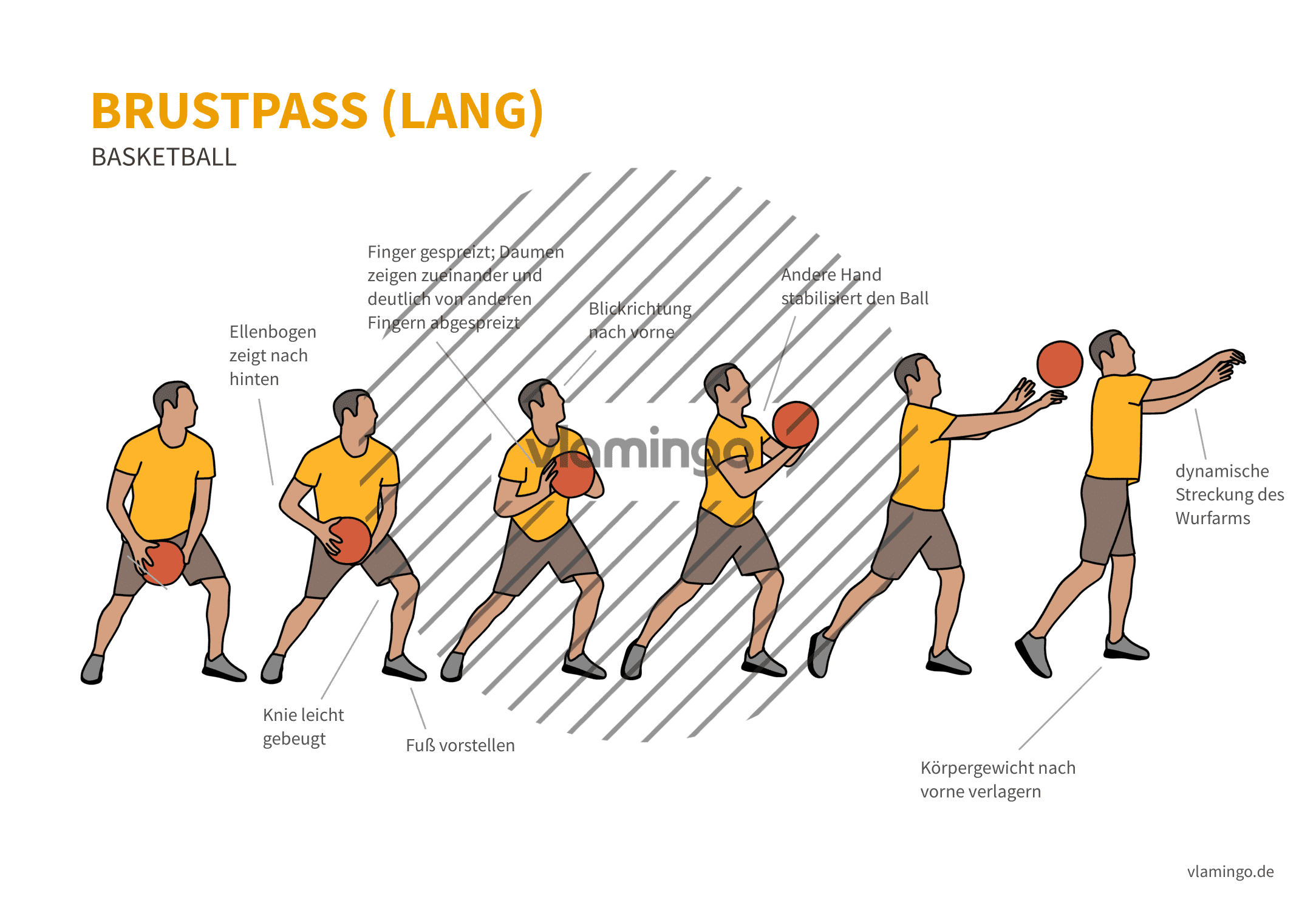 Basketball - Druckpass lang